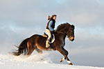 www.Riding-Vacations.info - Not without my Horse