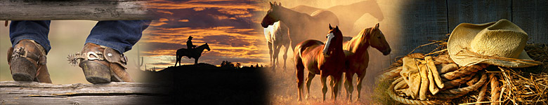 Cowboyfeeling – A directory for ranch vacations worldwide