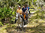 Directory for Horseback Riding Trips & Trail Rides